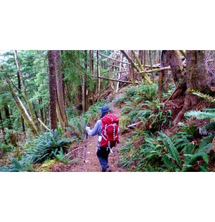 Backpacking The Oregon Coast Trail Tillamook Head Nextadventure Next Adventure