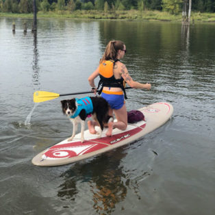 Take Your Dog Paddleboarding!
